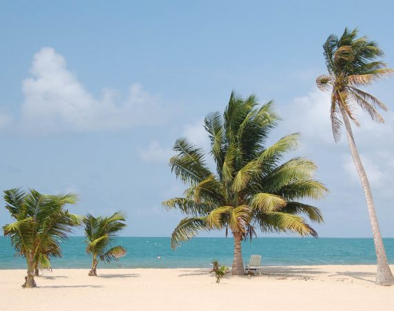 What To Do In Placencia – The Top Land Tours